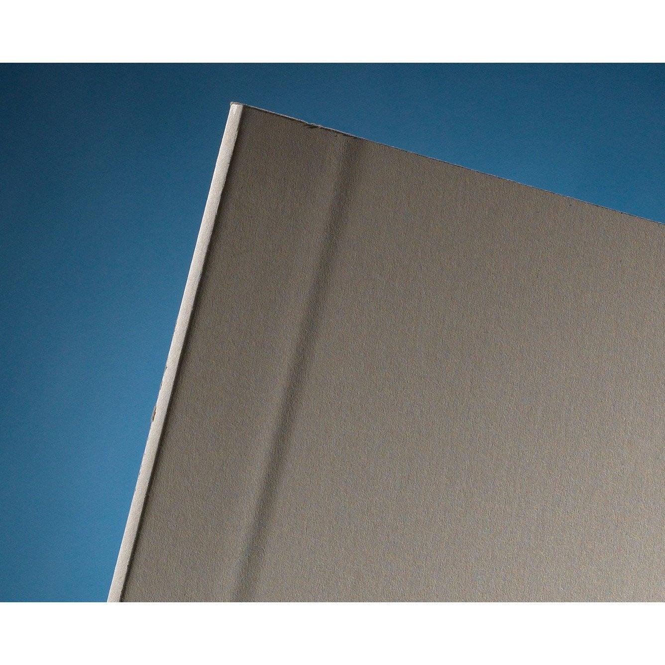 plaque de pl tre norgips nf ba13 nf 2500x1200 leroy merlin. Black Bedroom Furniture Sets. Home Design Ideas