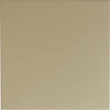 Faïence mur gris doré, Astuce l.20 x L.20 cm