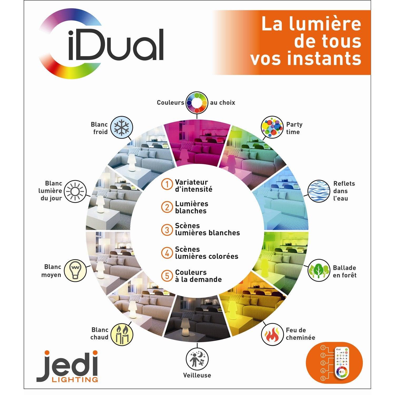 Intégrée LampeLed DahliaVerre500 Idual Rgb W rdCoxeBW