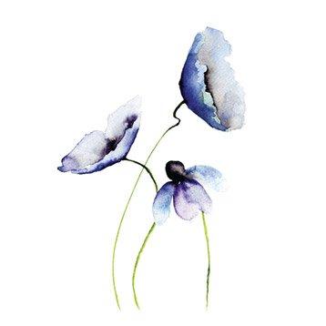 Affiche Aquarelle l.14 x H.14 cm