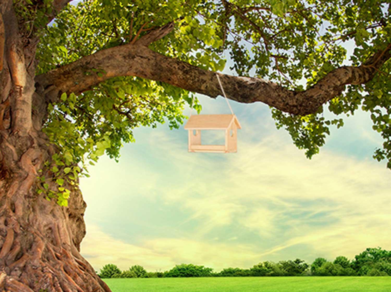 construire une mangeoire pour oiseaux leroy merlin. Black Bedroom Furniture Sets. Home Design Ideas