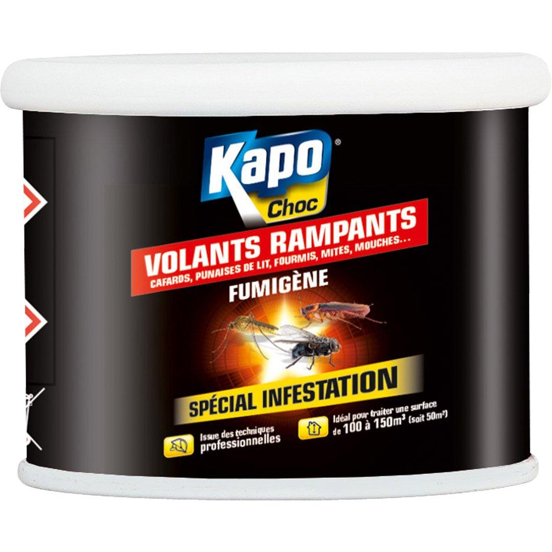 Insecte Salle De Bain Volant ~ fumig ne insecticide pour tous insectes kapo 37 5 g leroy merlin