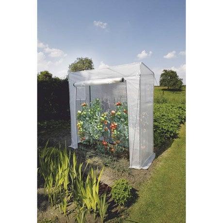 tunnel mini tunnel jardin serre tomates plateau leroy. Black Bedroom Furniture Sets. Home Design Ideas