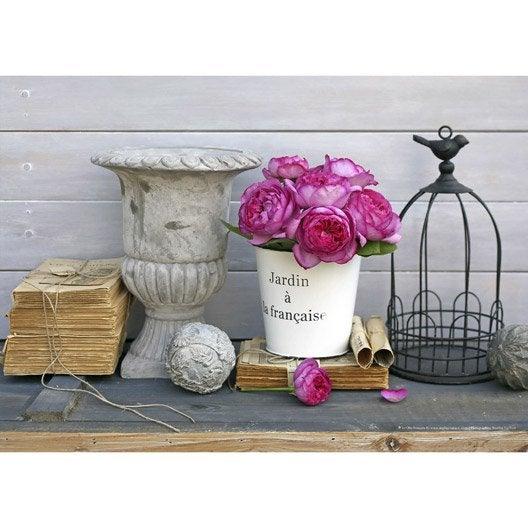 Toile imprim e vasque cage manuscrit roses et seau for Miroir 90x30