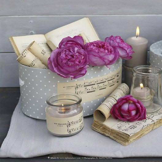 Toile led boite roses manuscrits et bougies 30x30 cm - Tableau toile leroy merlin ...