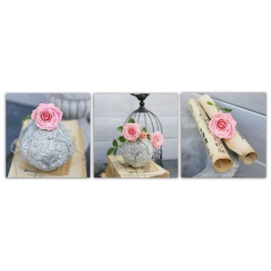 Set de 3 images encadr es roses rouleaux manuscrits cage for Miroir 90x30