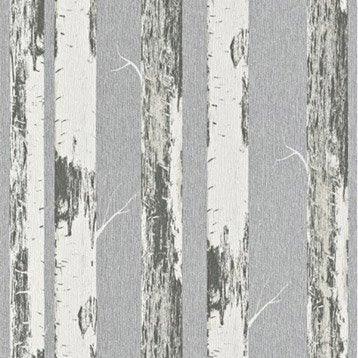 Papier peint intissé Bouleau gris