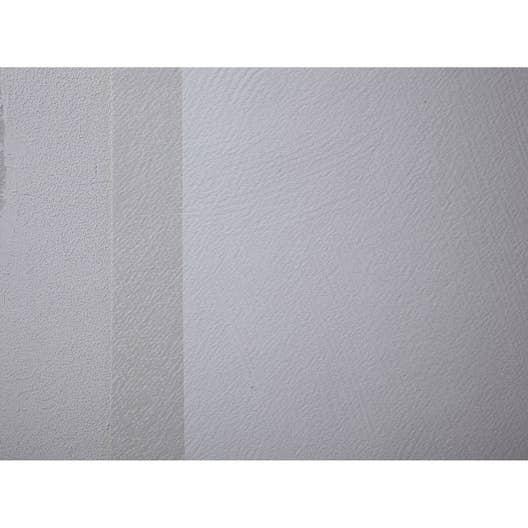 fibre de verre toile de verre taloche 220 g m 20mx100cm 230 g m leroy merlin. Black Bedroom Furniture Sets. Home Design Ideas