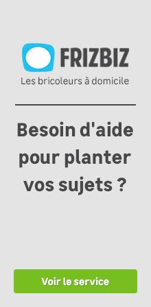 Tuteur Tomate Bambou Plastifié Au Meilleur Prix Leroy Merlin