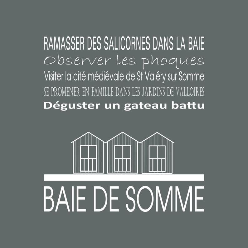 Toile Imprimée Baie De Somme Gris Artis L30 X H30 Cm