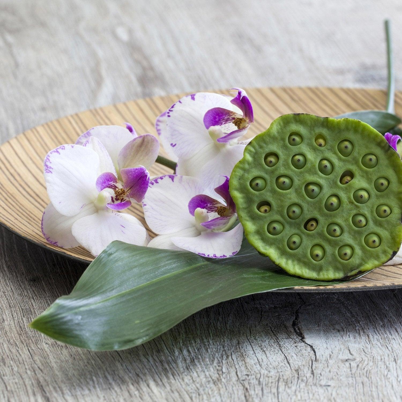 Set de 4 images Orchidées et bambou l.30 x H.30 cm