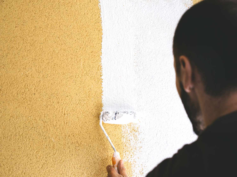 Peindre Ou Crépir Une Façade