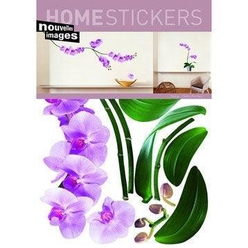 Sticker Orchidées, 49 x 69 cm