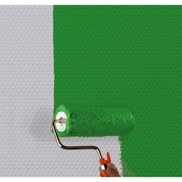 Fibre de verre Anti-moisissure maille classique 145 G/M² 20MX100CM 145 g/m²