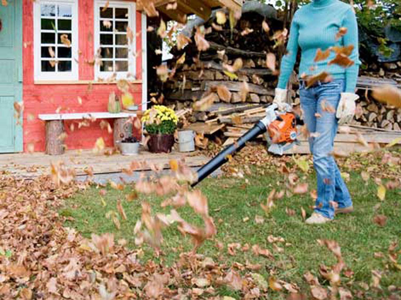 En octobre, c'est le moment du grand nettoyage du jardin