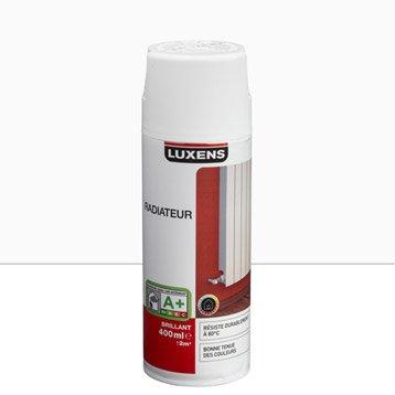 Bombe de peinture int rieure a rosol peinture spray leroy merlin - Bombe de peinture blanche ...
