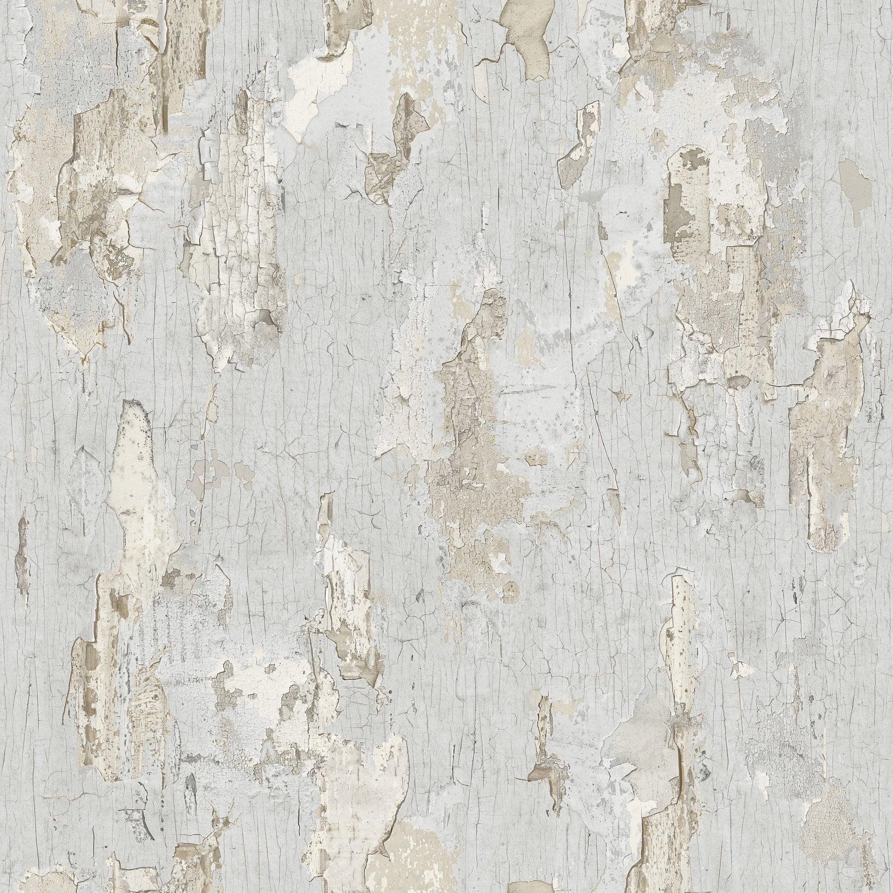 Papier Peint Vinyle Peinture écaillée Gris
