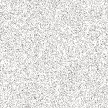 Voile de verre LANIVIT Planit pigment lisse, prépeint 200 g/m²