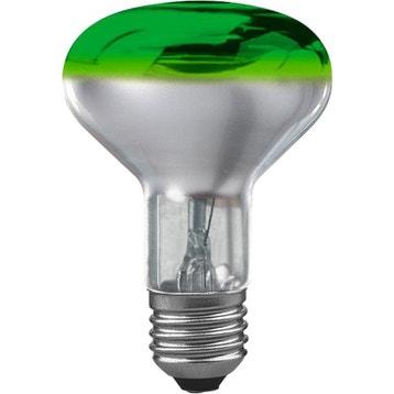 Ampoule Plante Verte Au Meilleur Prix Leroy Merlin