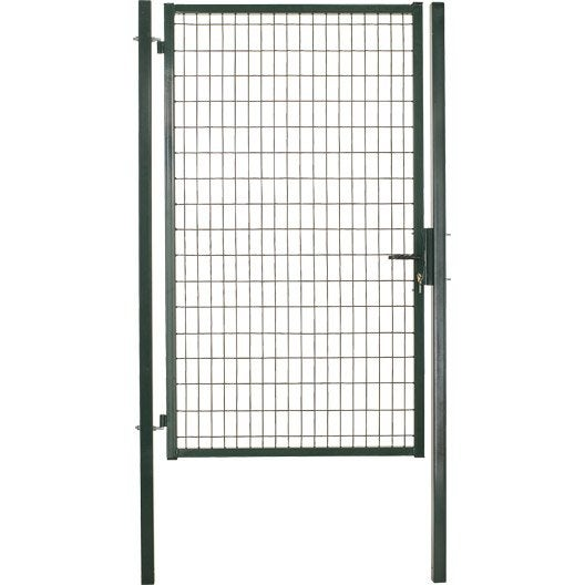 Portillon soud standard maille 100 x 50 mm leroy merlin for Dimension portillon standard