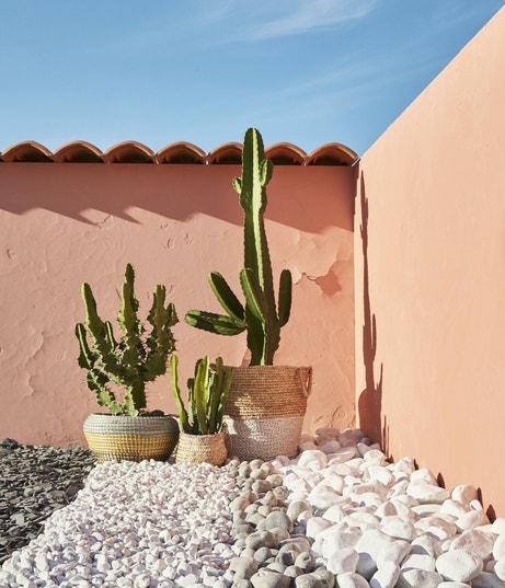 Galets et graviers pour aménager votre jardin | Leroy Merlin