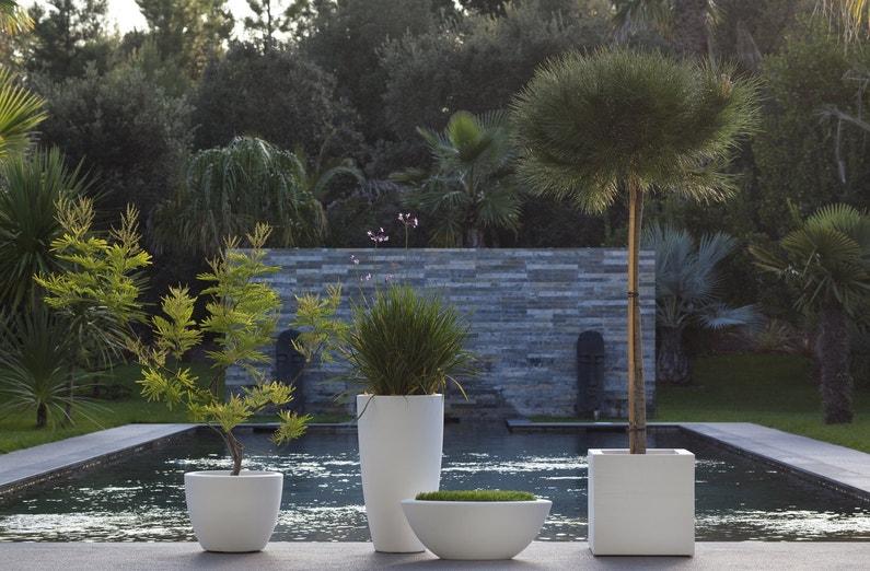 Un Jardin Avec Un Bassin Au Style Japonais Leroy Merlin
