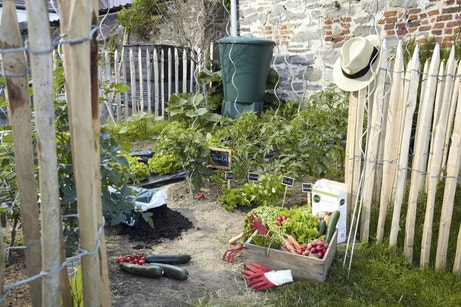 Un potager en bois pour cultiver dans son jardin