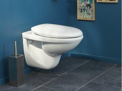 Comment choisir son abattant de WC ?   Leroy Merlin