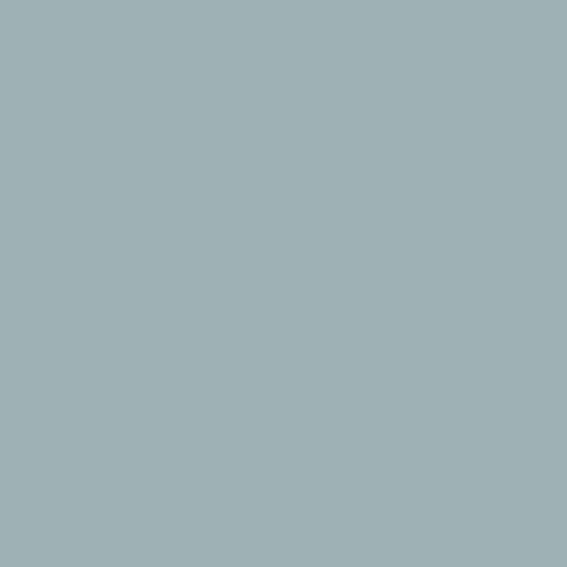 Peinture Mur Boiserie Radiateur Multisupports Envie Bleu Calme 2