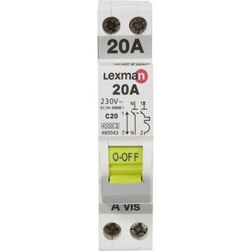 Disjoncteur phase + neutre LEXMAN 20 A