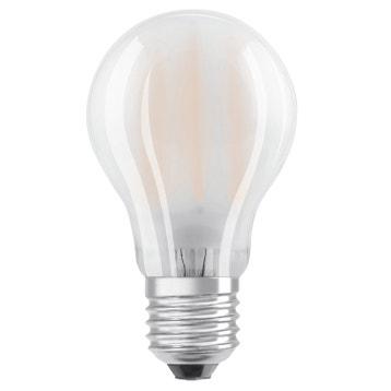 Ampoule Led Dimmable Au Meilleur Prix Leroy Merlin