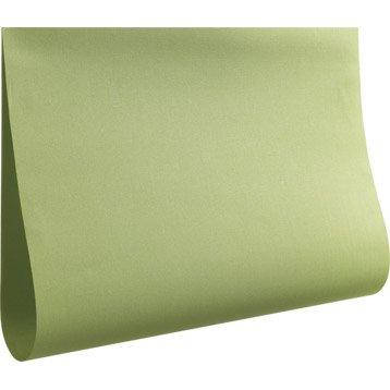 panneau japonais enduit inspire vert pistache n 5 260 x 50 cm. Black Bedroom Furniture Sets. Home Design Ideas