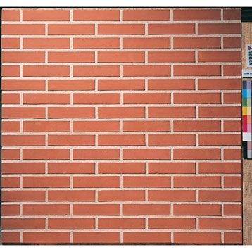 Brique perforéeP.5.4 x L.22 x l.10.5 cm