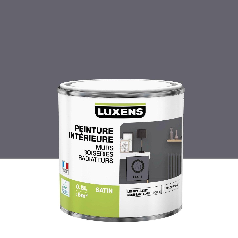 Peinture mur, boiserie, radiateur Multisupports LUXENS, fog 1, 0.5 l, satin