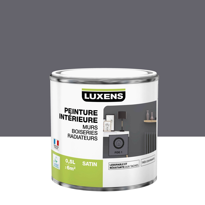 Peinture mur, boiserie, radiateur toutes pièces Multisupports LUXENS, fog 1, sat