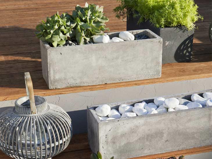 301 moved permanently - Conseils jardinage pour les plantes en pots ...