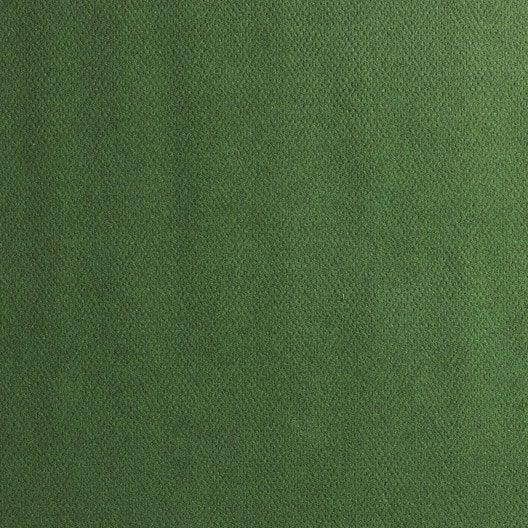 Gazon artificiel plot vert borneo l m with feutrine verte - Agrafeuse leroy merlin ...