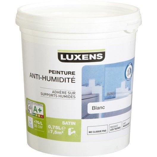 Ordinary Peinture Anti Humidite Leroy Merlin #2: 69086276-1-1