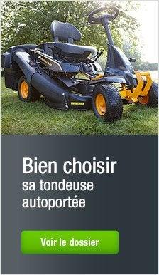 autoport e tracteur de pelouse rider outils pour tondre. Black Bedroom Furniture Sets. Home Design Ideas