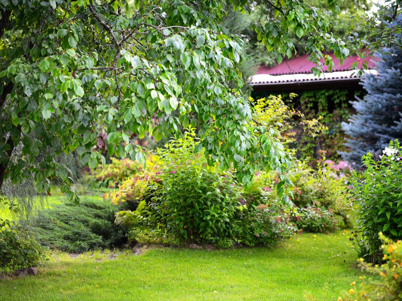Gazon terreau serre et entretien du jardin leroy merlin for Entretien jardin 41
