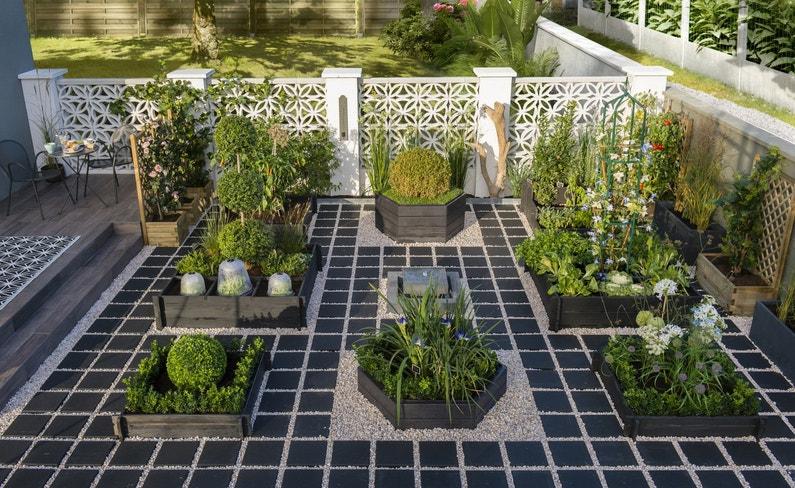 des plantes, des herbes aromatiques et des légumes bien rangés
