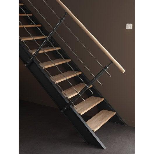 Kit rampe pour escalier lisa escapi leroy merlin - Rampe escalier castorama ...
