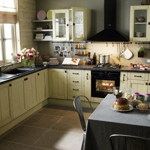 Cuisine couleur beige meubles cuisine beige quelle for Meubles cuisine beige quelle couleur murs