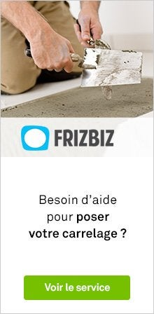 Frizbiz - carrelage
