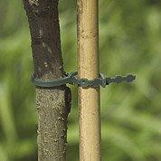 Lot de 40 liens pour arbres NORTENE