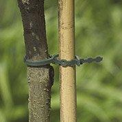 Lot de 20 liens pour arbres NORTENE