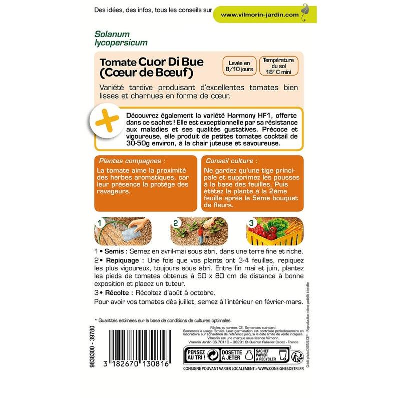 Tomate Coeur De Boeuf Vilmorin 1 5 G Leroy Merlin