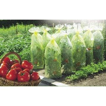 Housse de croissance tomate NORTENE