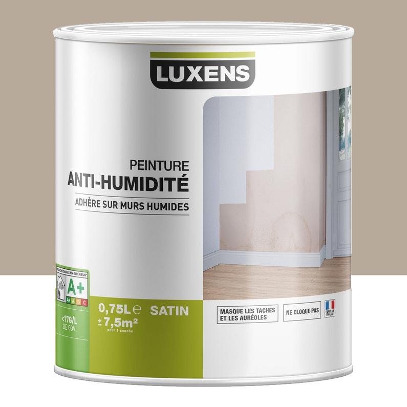 Peinture Antihumidité Luxens Taupe 075 L