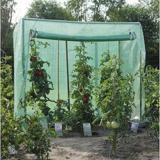 serre tomates acd 232990 x x cm leroy merlin. Black Bedroom Furniture Sets. Home Design Ideas